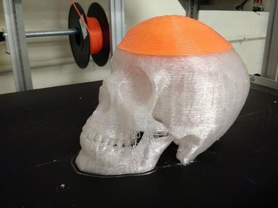 giga-skull
